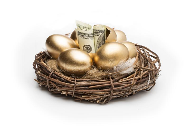 Nest with golden eggs on a white background. Golden Eggs in Nest with of Dollars royalty free stock photo