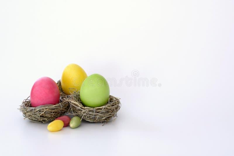 Nest met eieren stock fotografie
