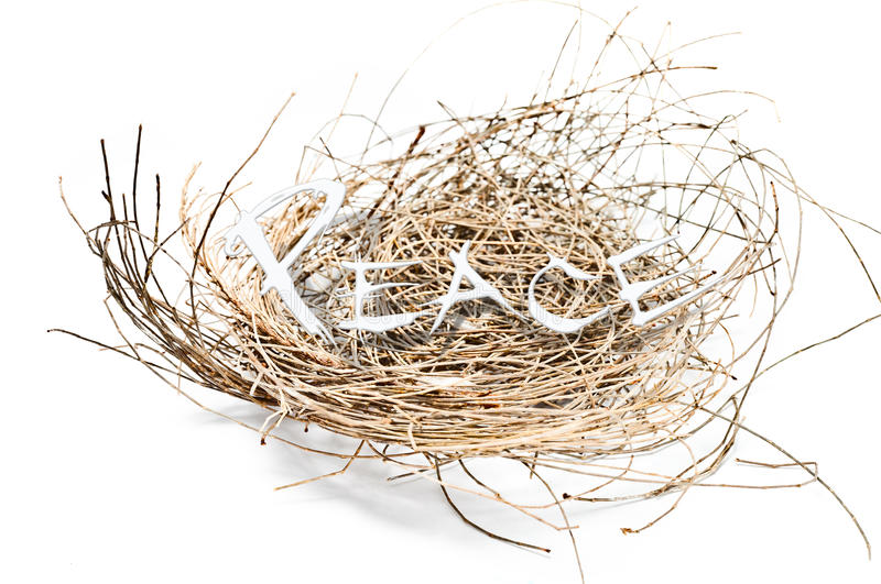 Download Nest and peace stock image. Image of white, begetting - 25468829