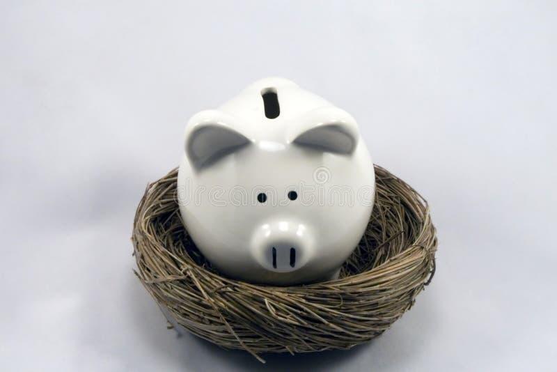 Download Nest Piggy stock photo. Image of budget, monetary, money - 2449066