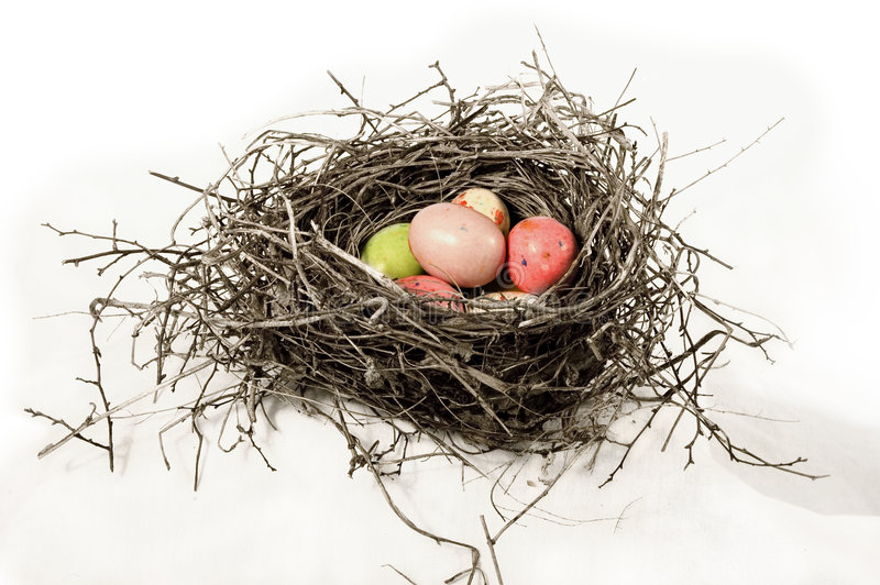 Download Nest with robins eggs stock photo. Image of season, colorful - 2210362