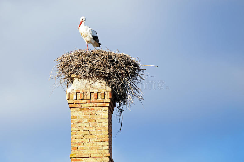 Nest With A Stork Onan Abandoned Factory Chimney. Stock Photos