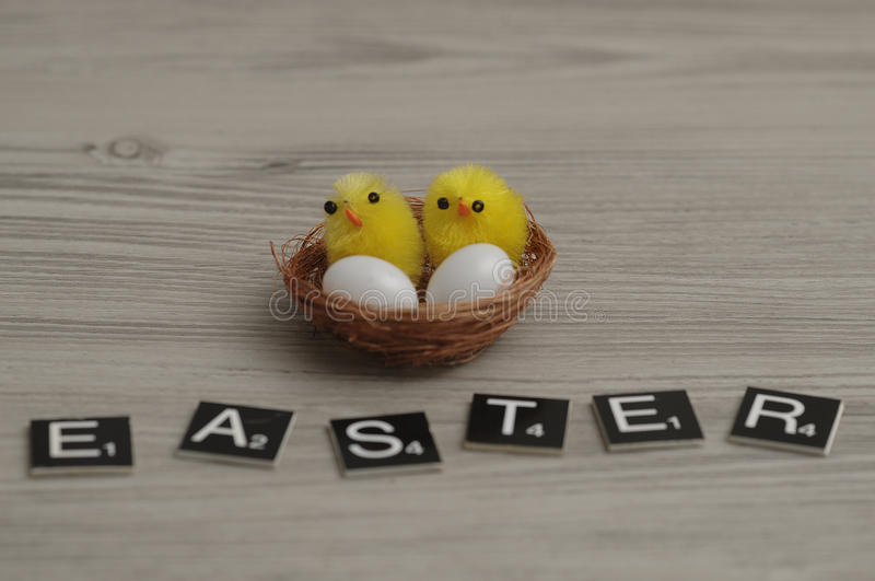 A nest with two baby chickens and two eggs and the word easter stock photography