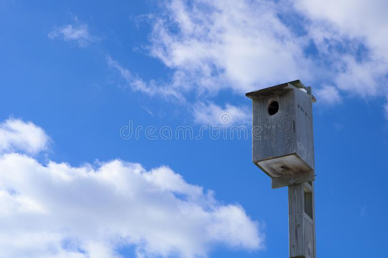 Nest under the sky stock photo