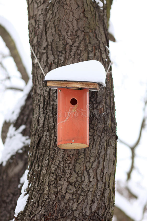 Download Nesting Box Covered By Snow Stock Image - Image of covered, blizzard: 12511193