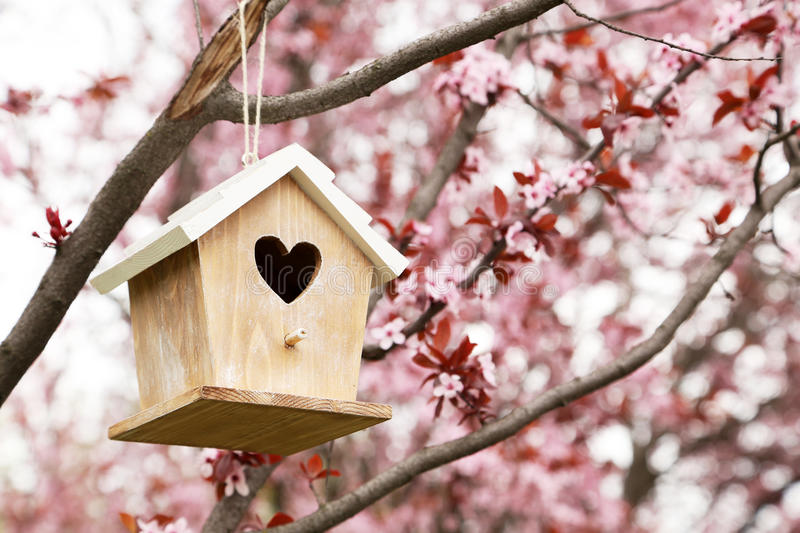 Nesting box. Hanging on the tree stock photos
