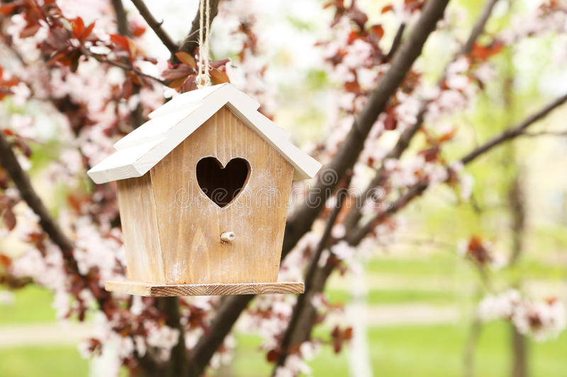Nesting box. Hanging on the tree royalty free stock photos