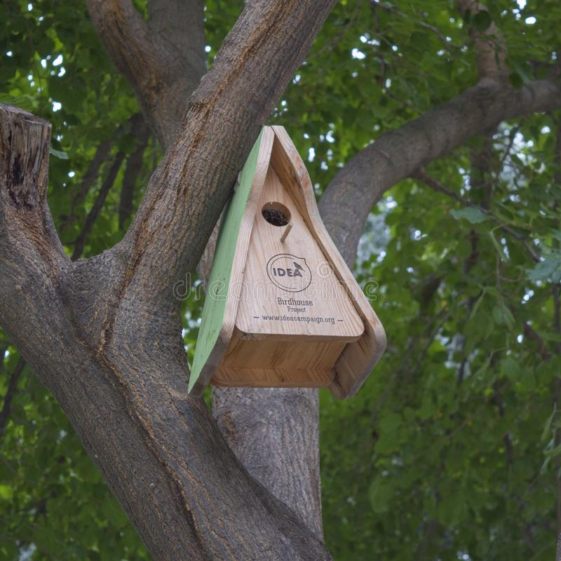 Nesting box. On tree royalty free stock images