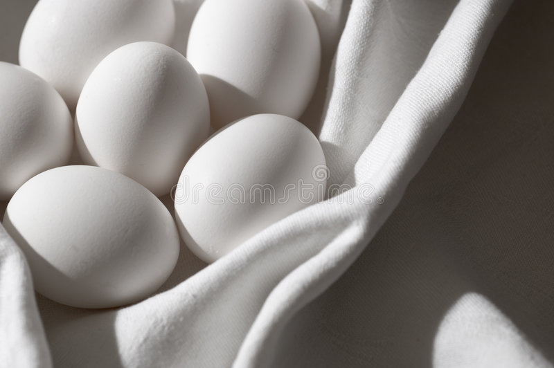 Download Nesting purity stock photo. Image of alternative, concept - 78844