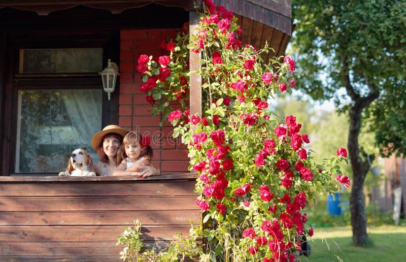 Neta, avó e seu cão na varanda da casa da vila fotos de stock