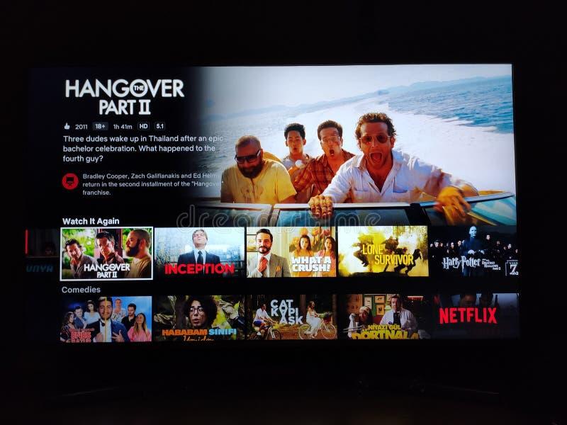 Netflix-App auf dem Fernsehbildschirm und das Logo der Serie 'Hangover Teil 2' hinter dem Fernsehbildschirm lizenzfreies stockfoto