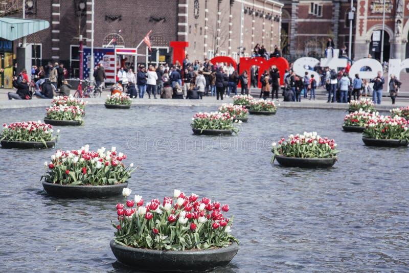 Netherland, κεντρικό τετράγωνο με το sighn Ι αγάπη Άμστερνταμ από το νερό μεταξύ της τουλίπας flowerbeds, έννοια ανθρώπων τρόπου  στοκ εικόνες