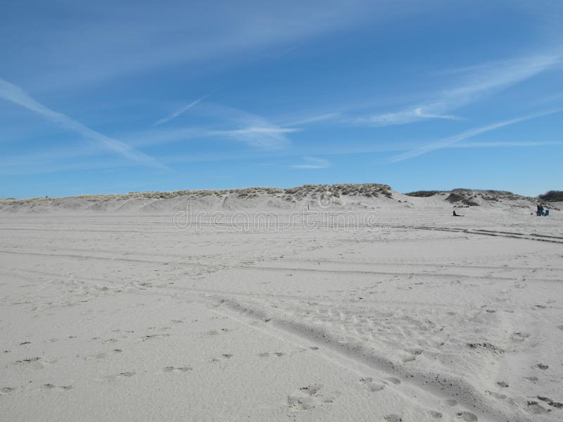 Netherlands beach & dunes stock photo