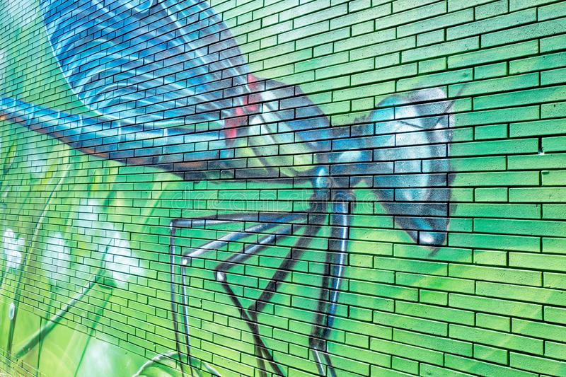 Graffiti artwork of a dragonfly on a wall. Created by artists of Graffitinetwerk in The vector illustration