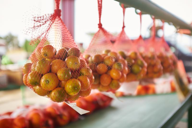 Nets with oranges hanging in row stock photos
