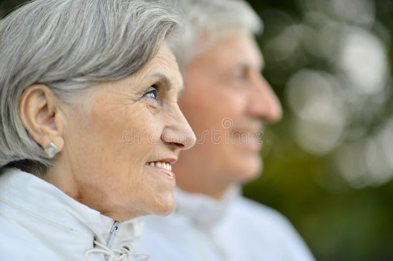 Nette ältere Paare lizenzfreie stockbilder