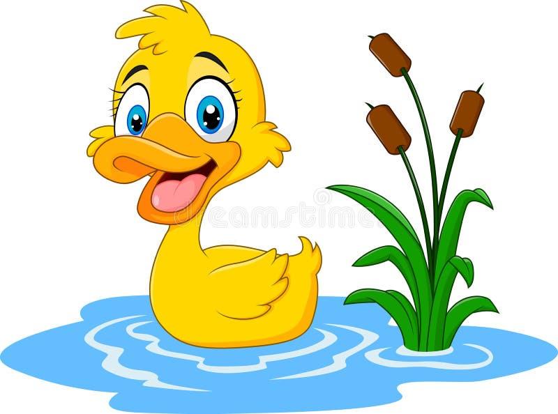 Nette Babyente schwimmt auf Wasser stock abbildung