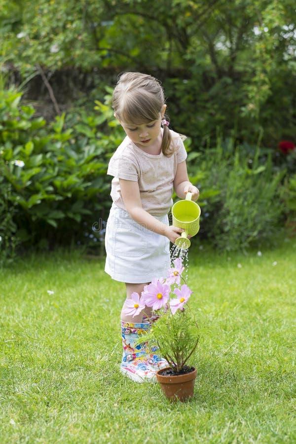 Nette Bewässerungsblumen des kleinen Mädchens im Garten stockfotografie