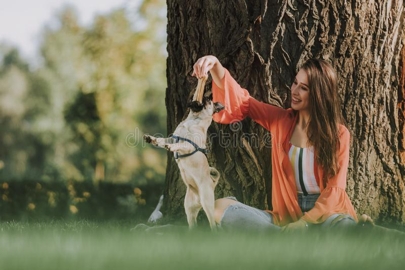 Nette Dame spielt mit ihrem Hund draußen stockfotografie