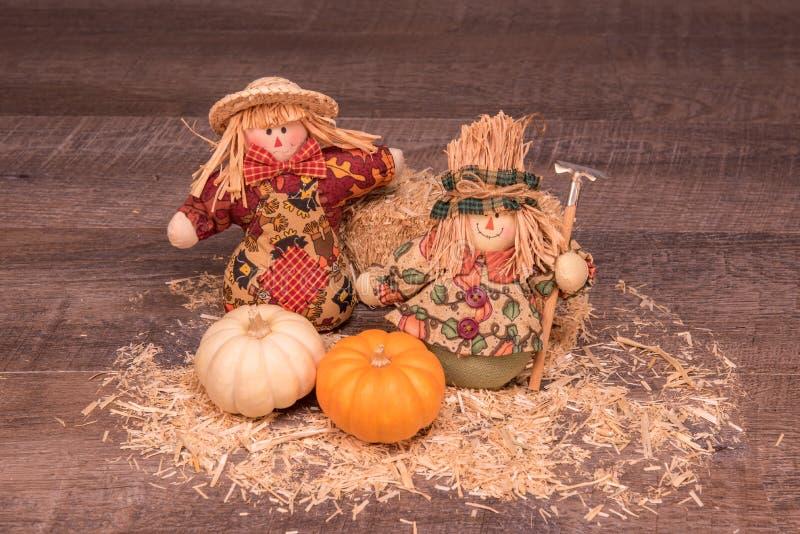 Nette dekorative Pilgermädchen begrüßen den Fall lizenzfreie stockfotos
