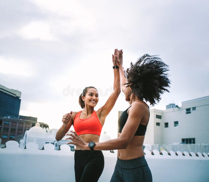 Nette Eignungsfrauen, die hohe fünf beim Rütteln auf Dachspitze geben stockfotos