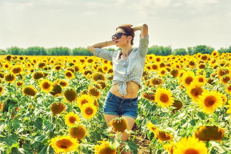 Nette Frau auf einem Sommerweg auf dem Gebiet mit Sonnenblumen stockbilder