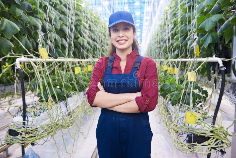 Nette Frau auf moderner Plantage stockbilder