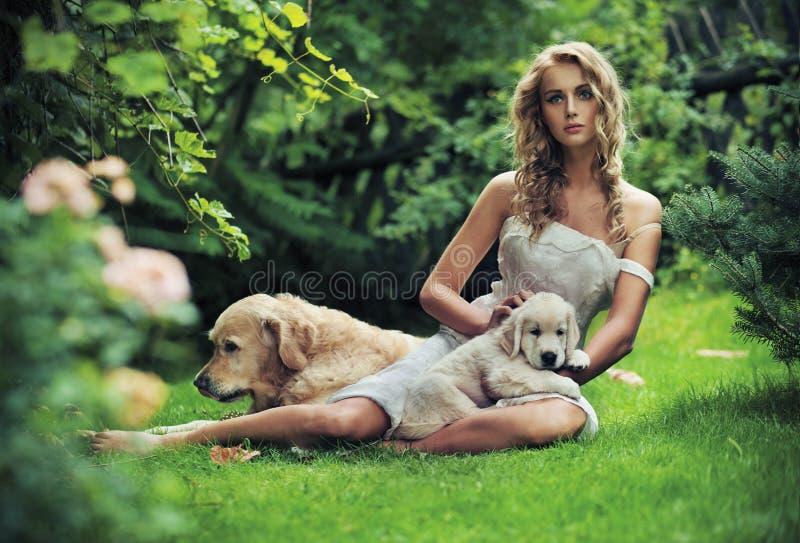 Nette Frau mit Hunden lizenzfreies stockbild