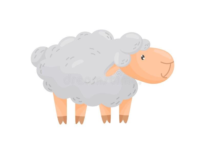 Nette gelockte Schafe auf einem wei?en Hintergrund Auch im corel abgehobenen Betrag stock abbildung