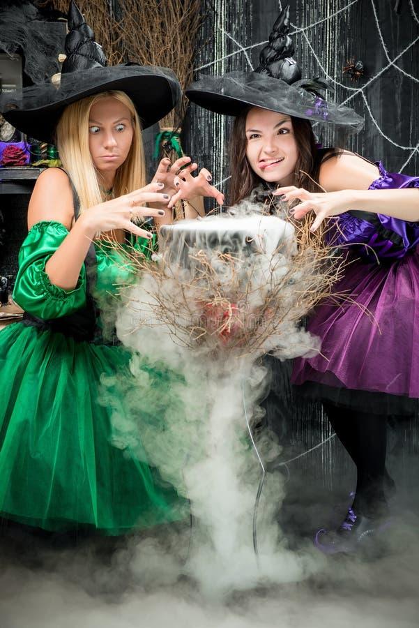 Nette Hexen kochen einen Trank für Halloween stockbild