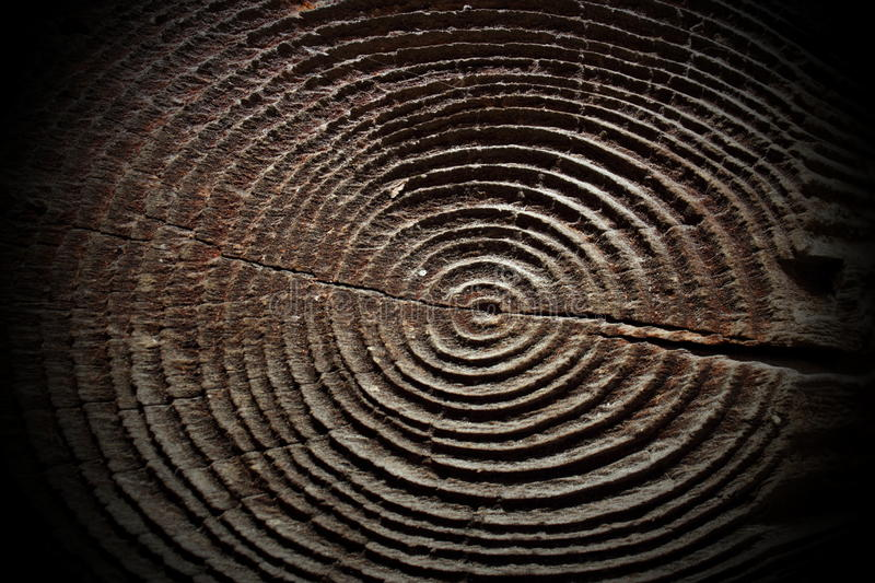 Nette houten ringen royalty-vrije stock foto