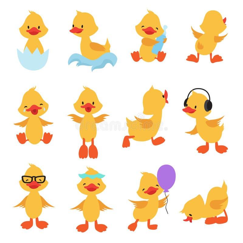 Nette Küken Gelbe Enten der Karikatur Babyenten-Vektorsatz vektor abbildung
