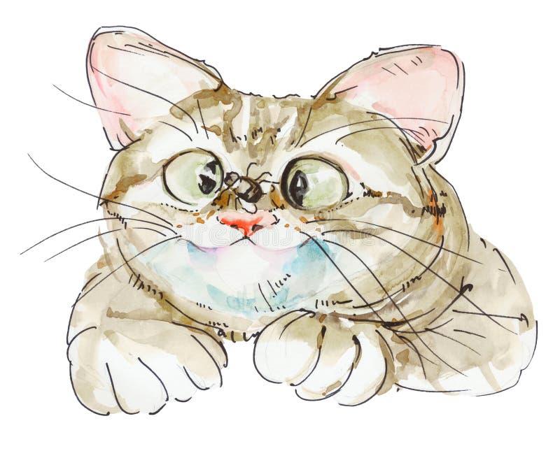 Nette Katze auf weißem Hintergrund mit der Fliege, die auf Nase sitzt watercolor vektor abbildung