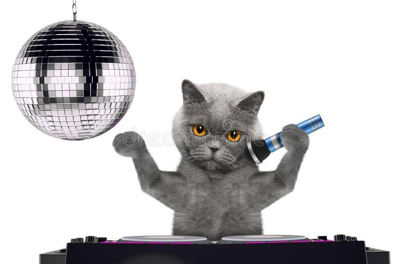 Nette Katze, die mit Mikrofon ein Karaokelied in einem Nachtclub singt -- lokalisiert auf Weiß stockbilder