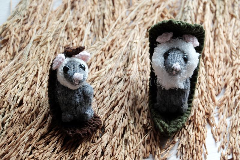 Nette Maus entspannen sich auf Garbe Paddy, woolen kleine Ratte stockfoto