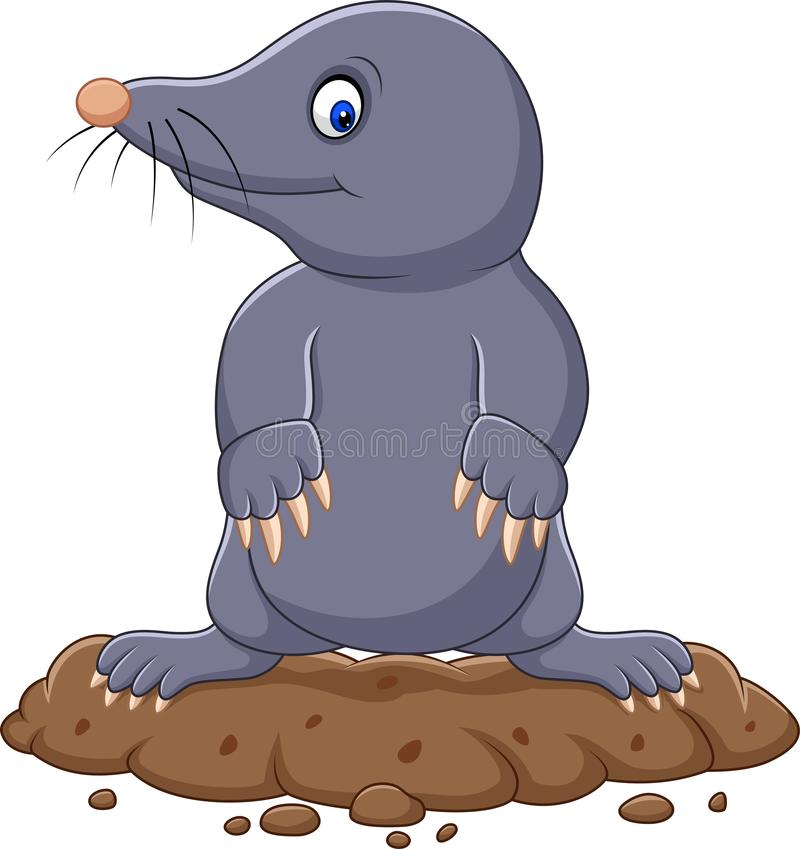 Nette Mole der Karikatur stock abbildung