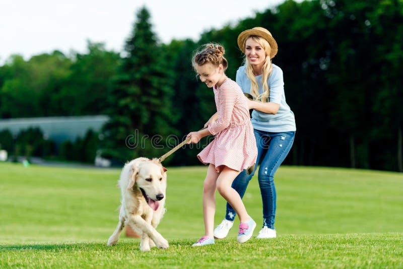 nette Mutter und Tochter, die mit golden retriever-Hund auf grünem Gras spielt lizenzfreie stockfotos