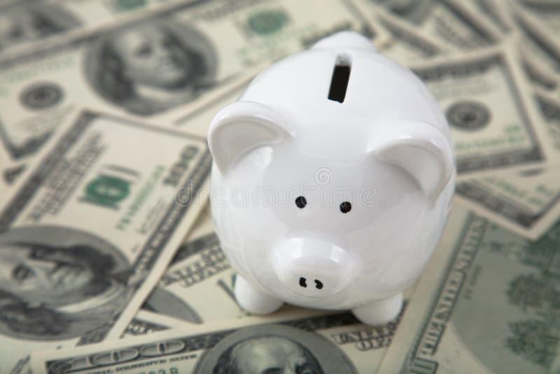 Nette Piggy Querneigung auf Haufen des Bargeldes stockfoto