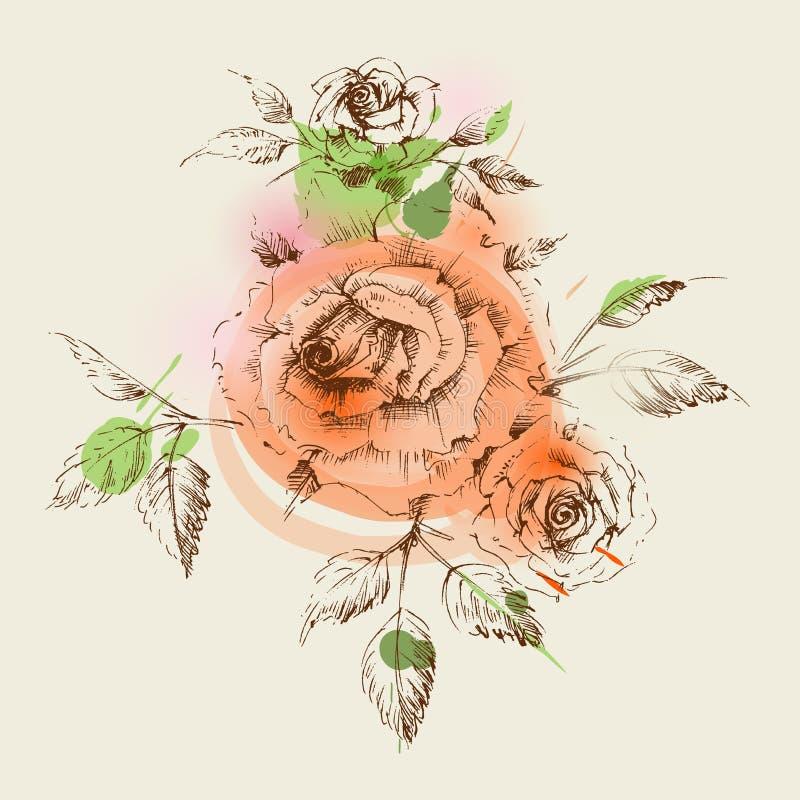 Nette Rosendekoration für Einladungen lizenzfreie abbildung