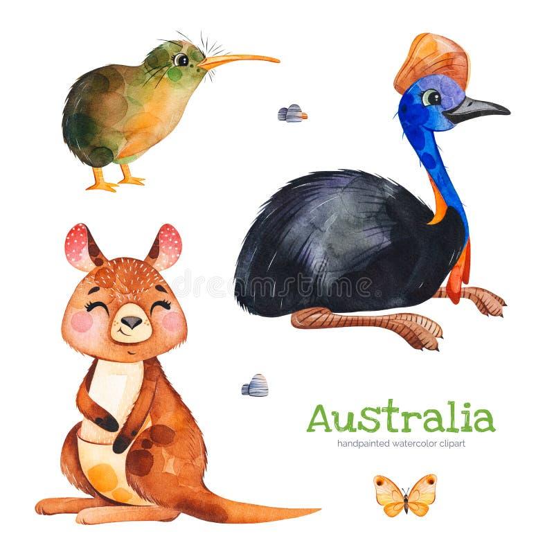 Nette Sammlung mit Kasuar, Kiwivogel, Känguru, Schmetterling, Steine lizenzfreie abbildung