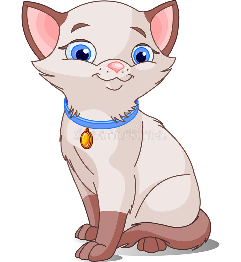 Nette siamesische Katze lizenzfreie abbildung
