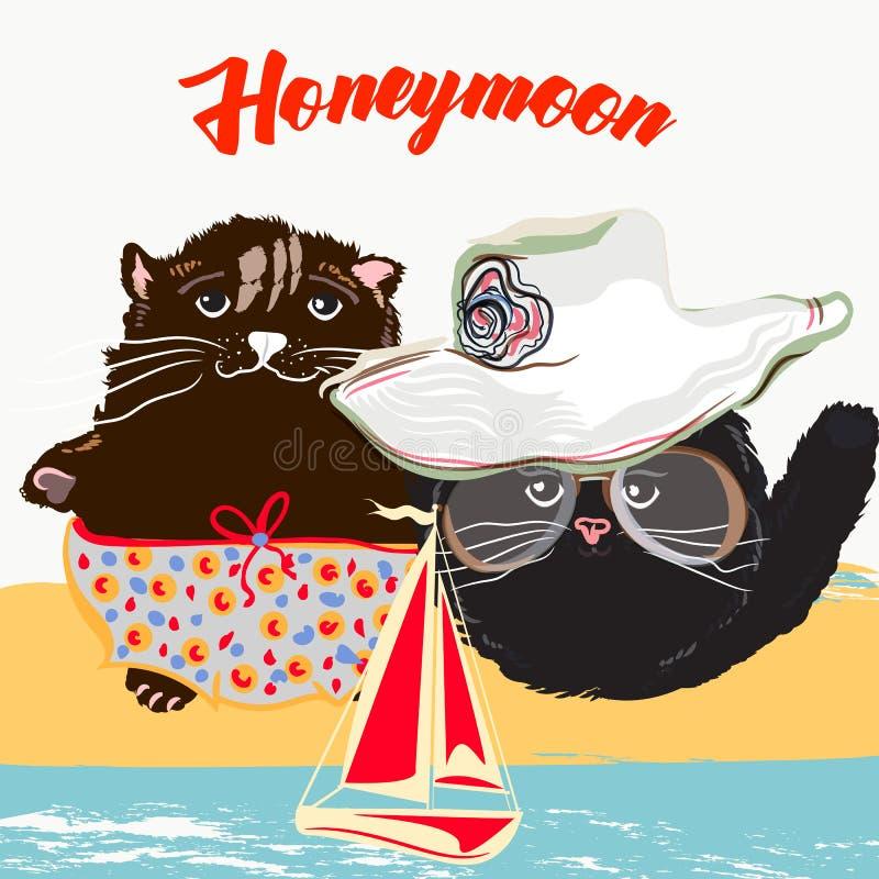 Nette Sommerplakatillustration mit hübschen Katzenpaaren auf vacati lizenzfreie abbildung