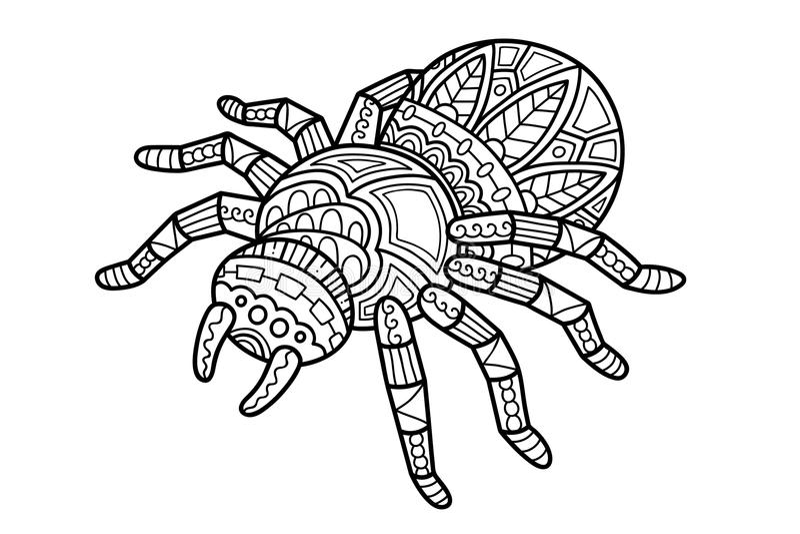Nette Spinne stock abbildung