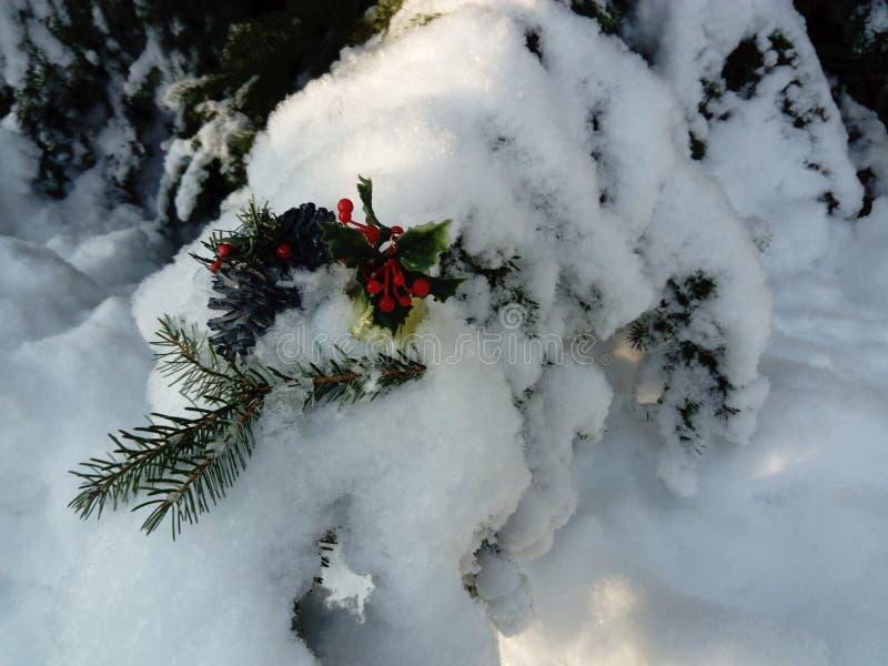 Nette Weihnachtsdekoration auf Schnee bedeckter Kiefer lizenzfreie stockbilder