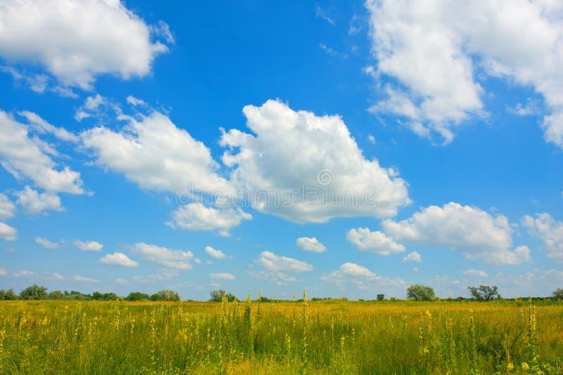 Nette Wolken über Wiese lizenzfreie stockfotografie