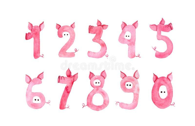 Nette Zahlen mit Schweinnase, Ohren, Geschichten für 2019-jähriges Lustige Handgezogener Guss für neues Jahr in der Schweinart vektor abbildung