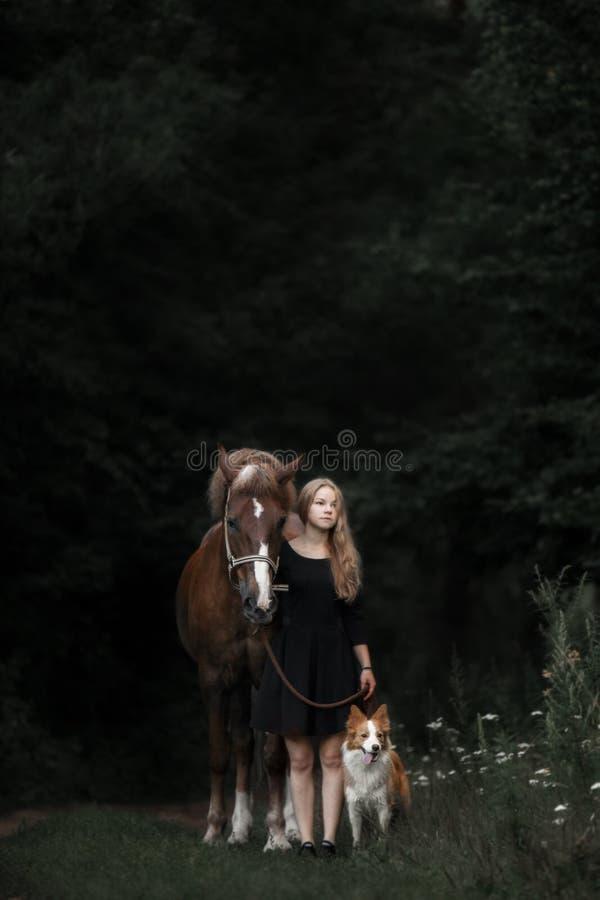 Netter Aufenthalt des kleinen Mädchens mit Pferd und rotem Hund durch den Wald im Sommer lizenzfreie stockfotografie