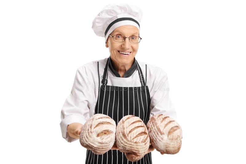 Netter Bäcker mit frisch gebackenen Brotlaiben stockbilder