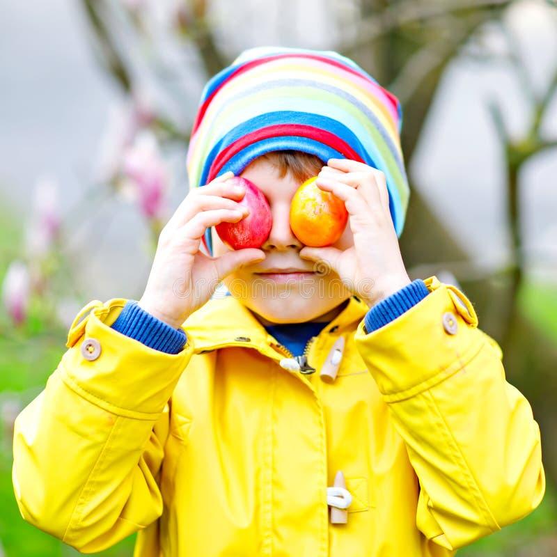 Netter entzückender Kleinkindjunge, der ein Ei jagen lässt auf Ostern Glückliches Kind, das bunte Eier in inländischem sucht und  lizenzfreie stockfotografie