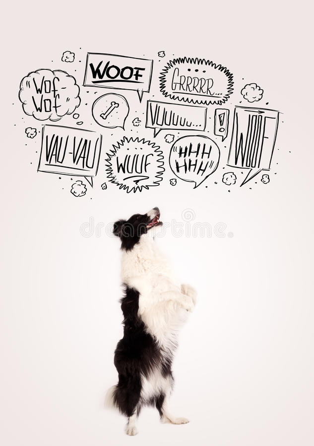 Netter Hund mit Abstreifenblasen lizenzfreie stockfotos